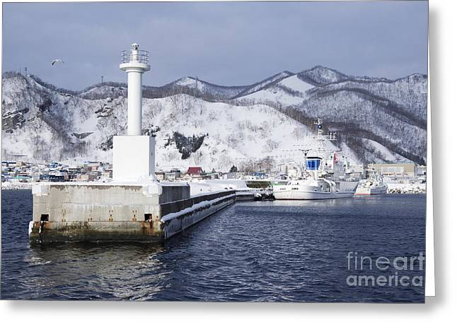 Snow Covered Hill Greeting Cards - Pier Light at Fishing Port Harbor Greeting Card by Jeremy Woodhouse