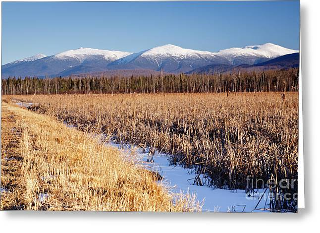 Best Sellers -  - New England Snow Scene Greeting Cards - Pondicherry Wildlife Refuge - Jefferson New Hampshire Greeting Card by Erin Paul Donovan