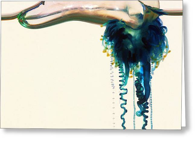 Portuguese Man-of-war Greeting Card by Georgette Douwma