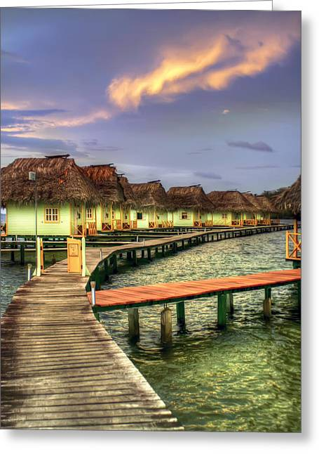 Tropical Oceans Greeting Cards - Punta Caracol Greeting Card by Dolly Sanchez