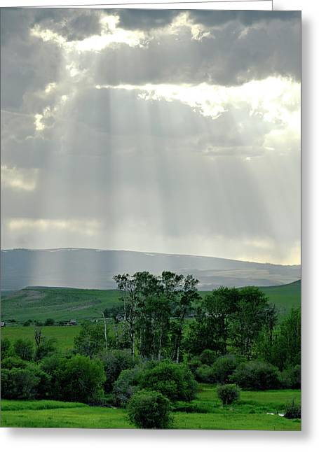 Rain Sun Rays Greeting Card by Roderick Bley