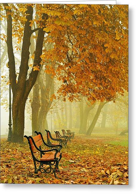 Alleys Greeting Cards - Red benches in the park Greeting Card by Jaroslaw Grudzinski