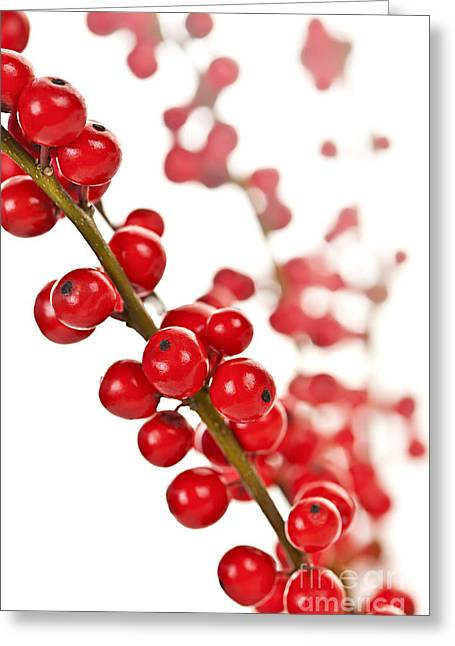 Decorate Greeting Cards - Red Christmas berries Greeting Card by Elena Elisseeva