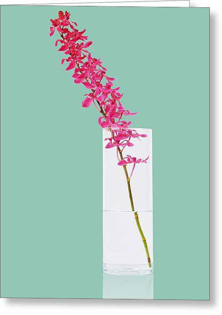 Reflex Greeting Cards - Red Orchid Bunch Greeting Card by Atiketta Sangasaeng