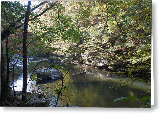 Richland Creek Greeting Cards - Richland Creek Greeting Card by David Troxel