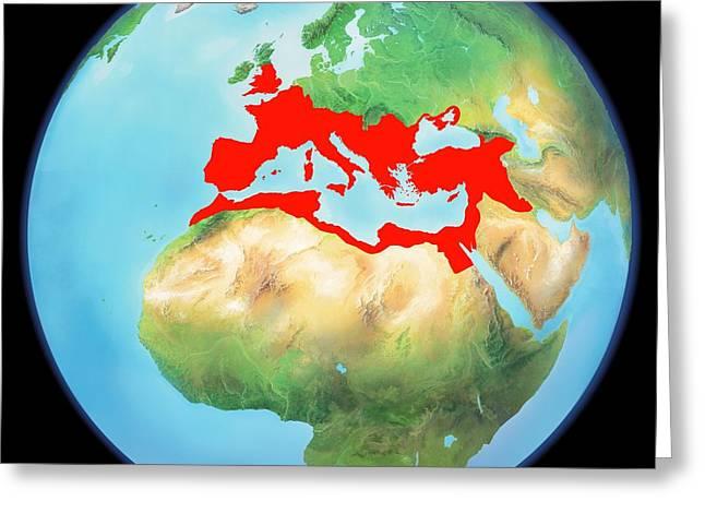 Northern Africa Greeting Cards - Roman Empire, Artwork Greeting Card by Gary Hincks