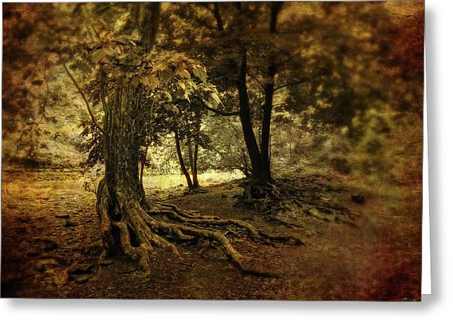 Tree Roots Digital Art Greeting Cards - Rooted in Nature Greeting Card by Jessica Jenney