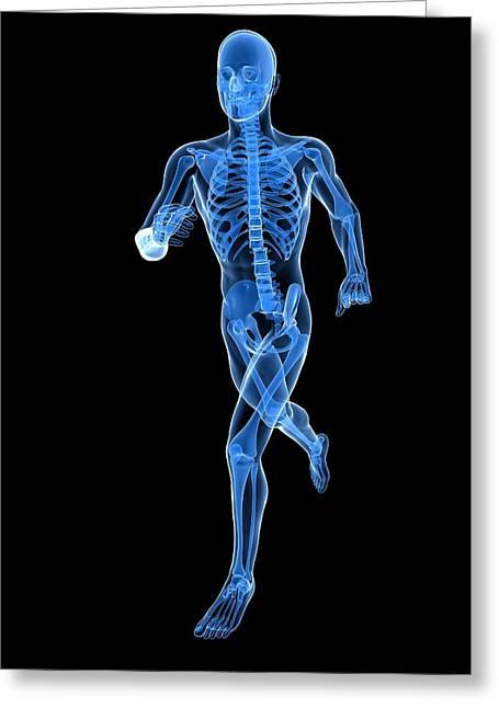 Jogging Greeting Cards - Running Skeleton, Artwork Greeting Card by Sciepro