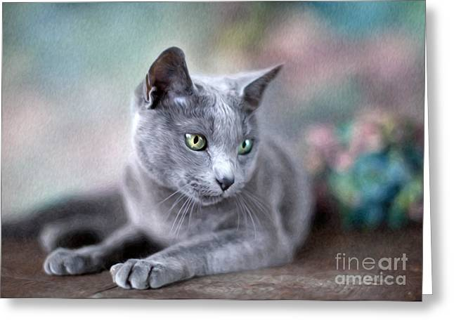 Whiskers Greeting Cards - Russian Blue Greeting Card by Nailia Schwarz