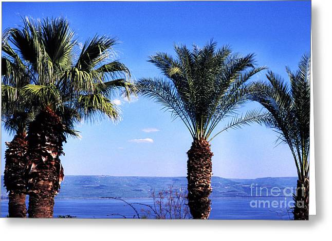 Jesus Sermon Greeting Cards - Sea of Galilee from  Mount of the Beatitudes Greeting Card by Thomas R Fletcher