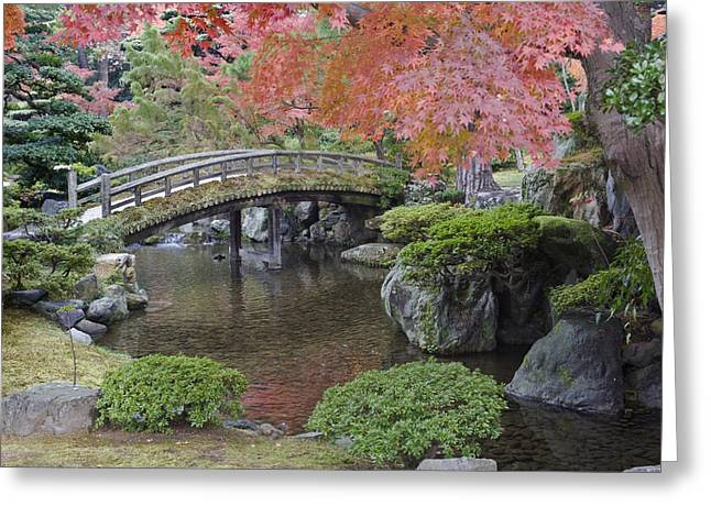 Kyoto Greeting Cards - Sento Imperial Palace Gardens Lake Greeting Card by Rob Tilley