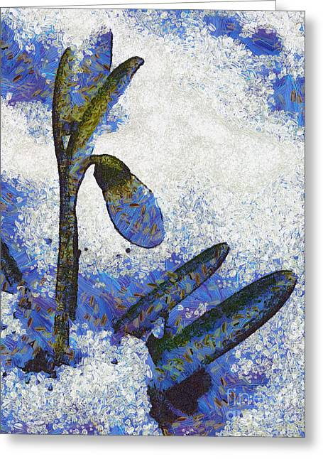 Sweating Greeting Cards - Snowdrop Greeting Card by Odon Czintos