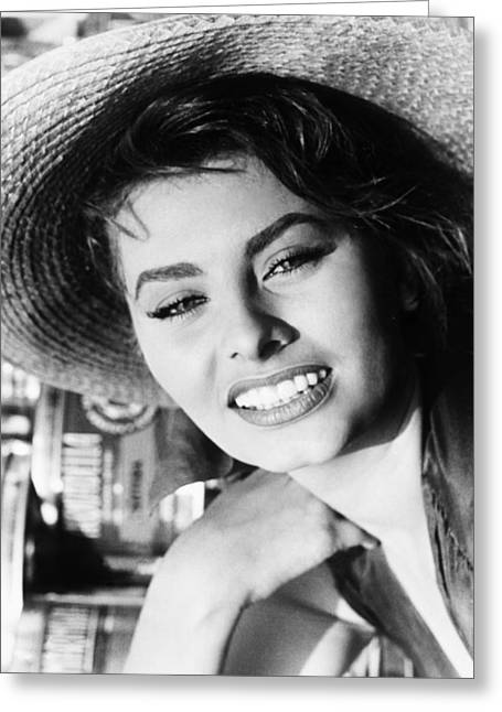 Starlet Greeting Cards - Sophia Loren (1934-  ) Greeting Card by Granger