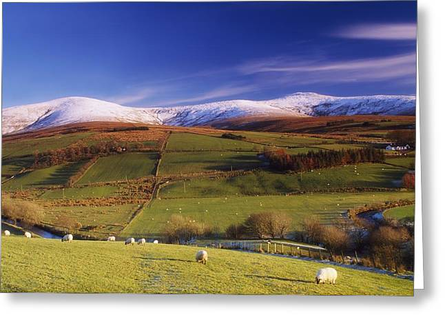 Incline Greeting Cards - Sperrin Mountains, Co Tyrone, Ireland Greeting Card by The Irish Image Collection