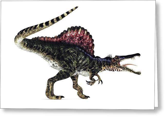 Bipedal Greeting Cards - Spinosaurus Dinosaur, Artwork Greeting Card by Animate4.comscience Photo Libary