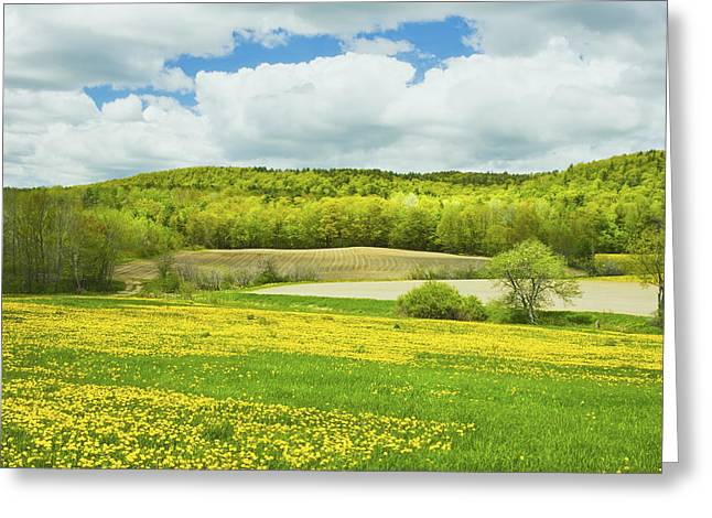 Maine Spring Greeting Cards - Spring Farm Landscape In Maine Greeting Card by Keith Webber Jr
