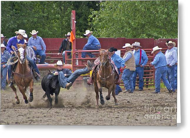 Roy Pioneer Rodeo Greeting Cards - Steer Wrestler Greeting Card by Sean Griffin