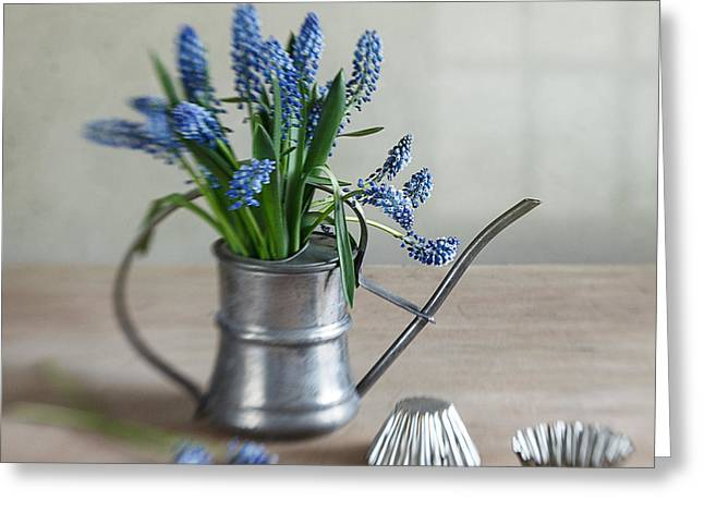 Wall Table Greeting Cards - Still life with grape hyacinths Greeting Card by Nailia Schwarz