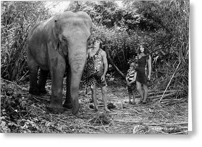 Kingston Greeting Cards - Tarzan The Mighty, 1928 Greeting Card by Granger