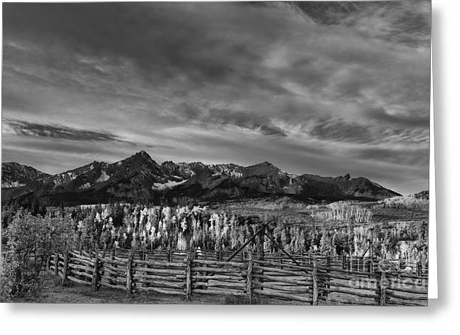 Recently Sold -  - Grazing Snow Greeting Cards - The Dallas Divide Greeting Card by Keith Kapple