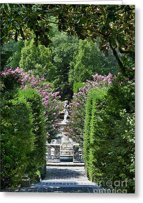Crape Greeting Cards - The Elizabethan Gardens Greeting Card by John Greim