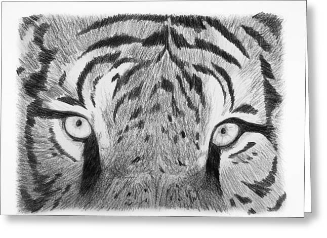 The Tiger Drawings Greeting Cards - The Eyes of the Tiger Greeting Card by Luca Rosa