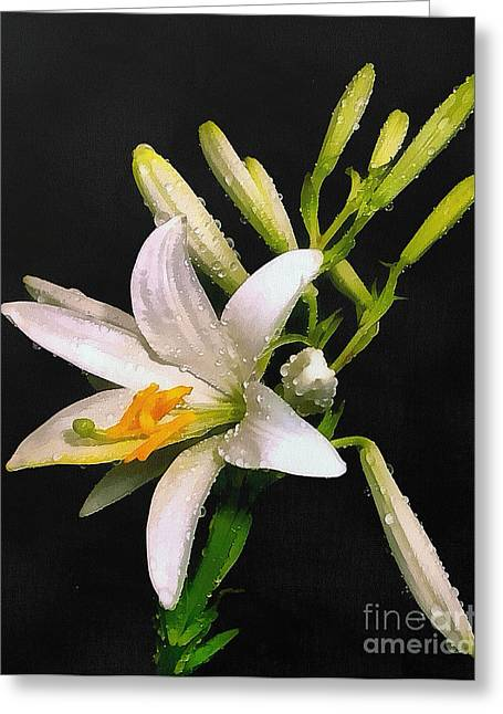 Gold Lame Greeting Cards - The lily Greeting Card by Odon Czintos