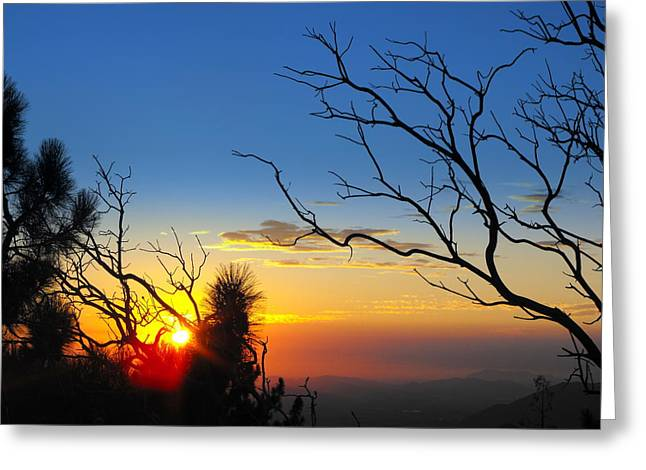 Idyllwild Greeting Cards - The Point Greeting Card by Skye Zambrana