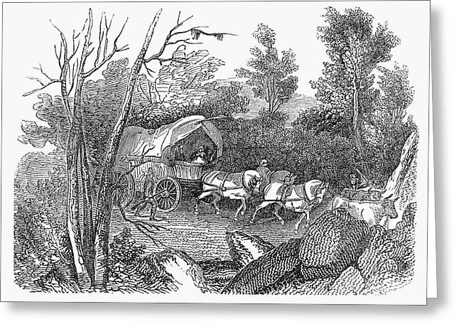 Founders Tree Greeting Cards - Thomas Hooker (1586-1647) Greeting Card by Granger