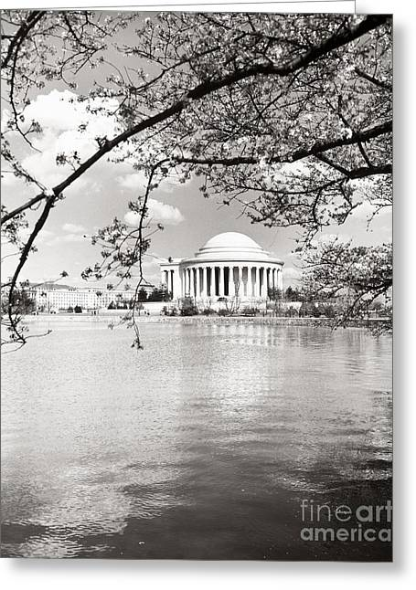 Tidal Photographs Greeting Cards - Thomas Jefferson Memorial Greeting Card by Granger