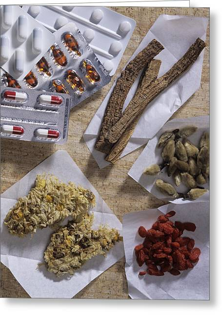 Qi Greeting Cards - Traditional Chinese Medicines Greeting Card by Sheila Terry