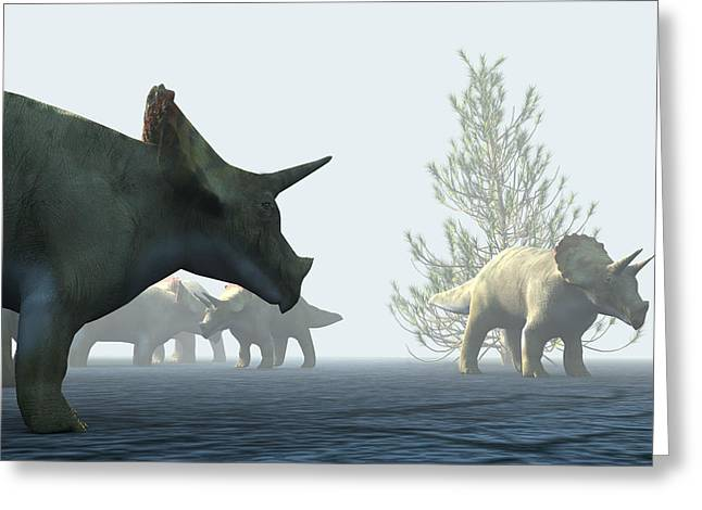 Triceratops Greeting Cards - Triceratops Dinosaurs Greeting Card by Christian Darkin