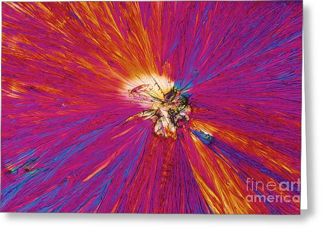 Polarizing Greeting Cards - Trinitrotoluene Greeting Card by Michael W. Davidson