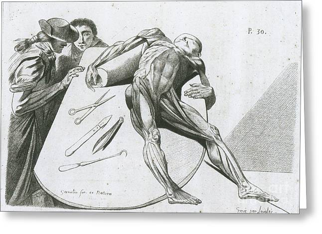 Two Gentlemen Contemplating A Cadaver Greeting Card by Science Source