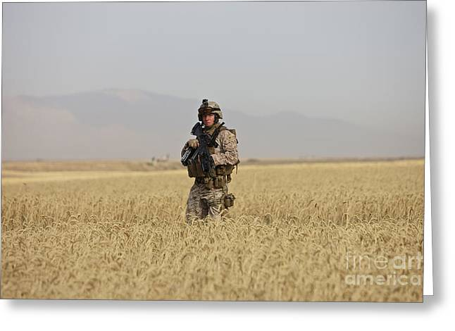 Foot Patrol Greeting Cards - U.s. Marine Patrols A Wadi Near Kunduz Greeting Card by Terry Moore