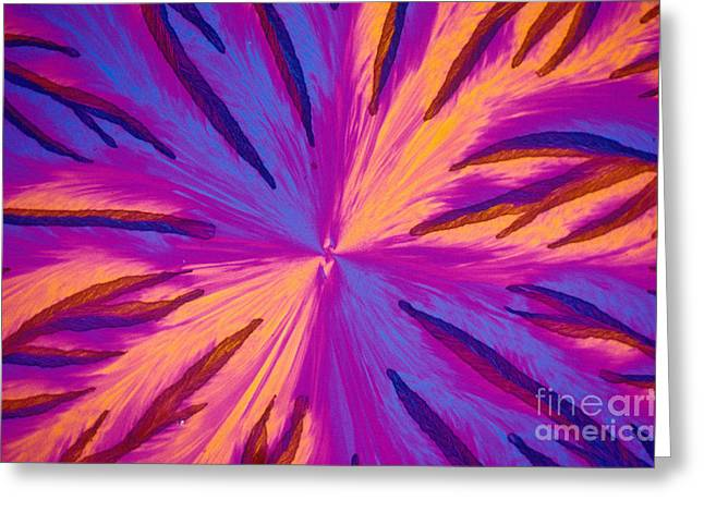 Micrography Greeting Cards - Vitamin E Crystal Greeting Card by Michael W Davidson
