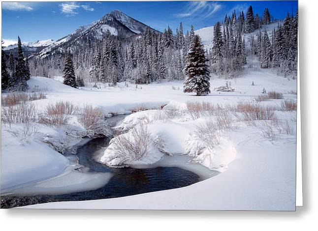 Snowy Day Greeting Cards - Wasatch Mountains in Winter Greeting Card by Utah Images