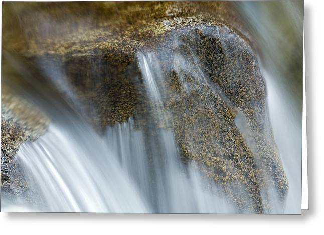 Kings Canyon National Park Greeting Cards - Water Flowing In The South Fork Kings Greeting Card by Rich Reid