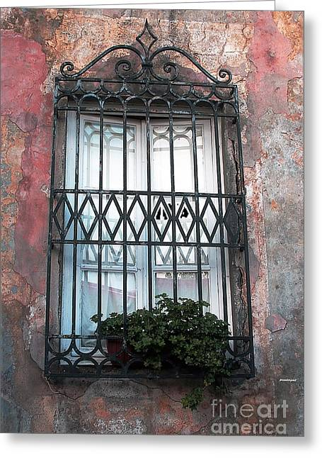 Landscapes Of Tuscany Greeting Cards - Window in Tuscany Greeting Card by Tom Prendergast