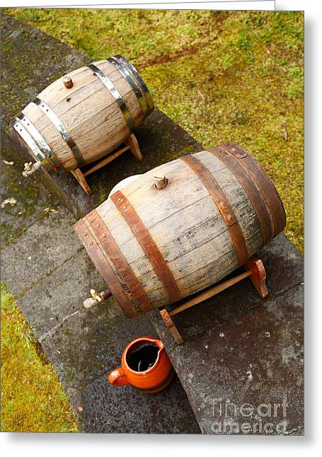 Cooperage Greeting Cards - Wine barrels Greeting Card by Gaspar Avila