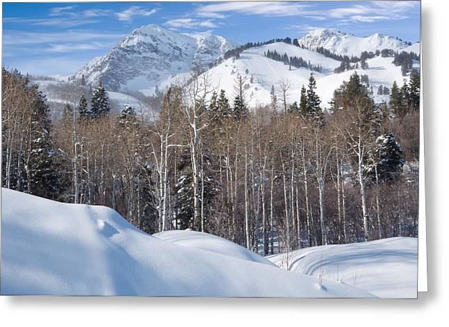 Snowy Day Greeting Cards - Winter in the Wasatch Mountains of Northern Utah Greeting Card by Utah Images