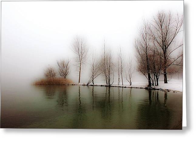 Sea Shore Greeting Cards - Winter Trees Greeting Card by Joana Kruse