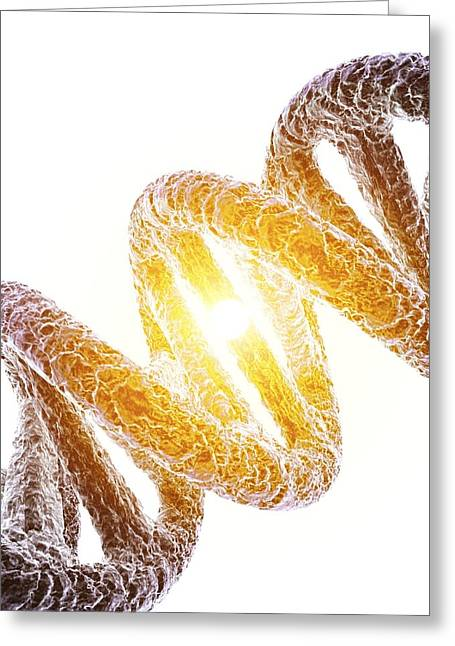 Helix Greeting Cards - Dna Molecule, Artwork Greeting Card by Pasieka