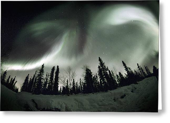 Observer Greeting Cards - Aurora Borealis Greeting Card by Chris Madeley