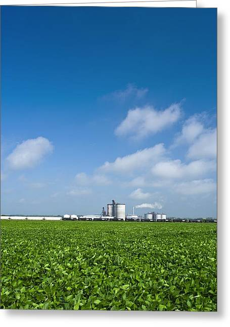 Green Beans Greeting Cards - Corn Ethanol Processing Plant Greeting Card by David Nunuk