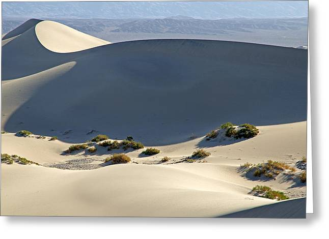 Death Valley Greeting Card by Elijah Weber