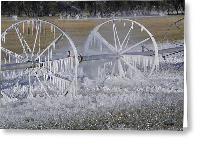23 Degrees Greeting Card by Fran Riley