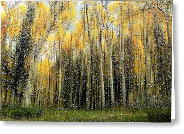 2399 Greeting Card by Peter Holme III