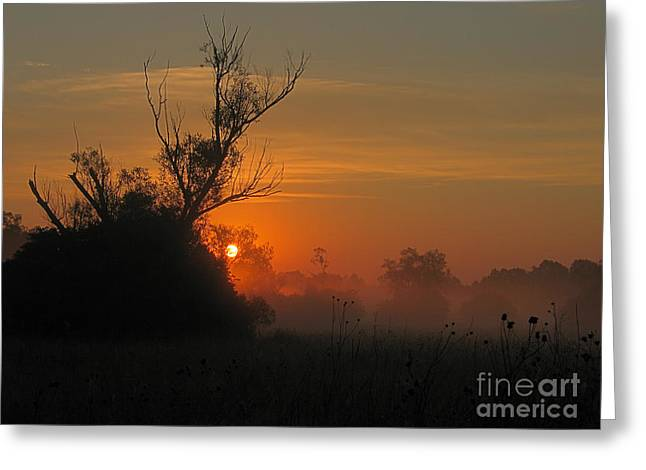Sweating Greeting Cards - Sunset Greeting Card by Odon Czintos