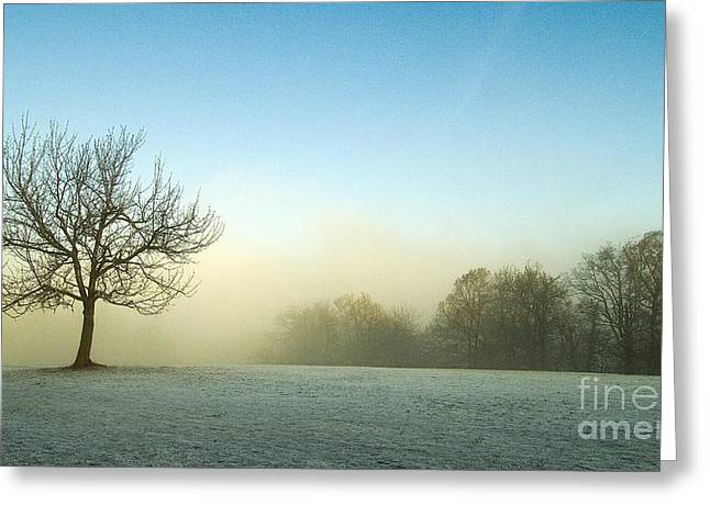 Sweating Greeting Cards -  Landscape Greeting Card by Odon Czintos